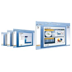 SAP Crystal Reports 2011 - license - 1 named user