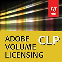 Adobe Director - upgrade plan (1 year) - 1 concurrent user