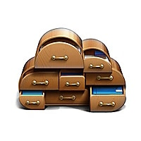 Acronis Backup to Cloud - Volume Subscription license (1 year) - 11 TB capa