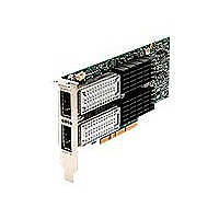Oracle Dual Port QDR InfiniBand Adapter M3 - network adapter