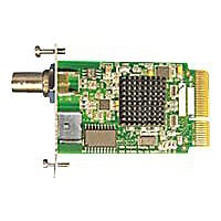 NDS S-Video/composite video input module