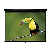 Hamilton Buhl Video Format - projection screen - 120 in (305 cm)