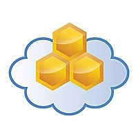 Aerohive HiveManager Online for Cloud VPN Gateway - subscription license re
