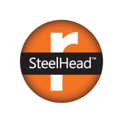 Riverbed SteelHead CX Appliance - license - 622 Mbps, 60000 connections