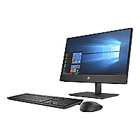 HP ProOne 600 G5 - all-in-one - Core i5 9500 3 GHz - 8 GB - 256 GB - LED 21