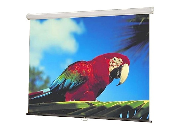 "Draper Luma NTSC Format Fiberglass Matt White - projection screen - 100"" (1"