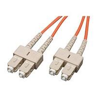 Tripp Lite 3M Duplex Multimode Fiber 62.5/125 Patch Cable SC/SC 10ft