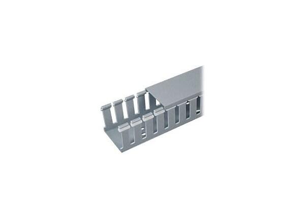 Panduit PANDUCT Type G Wide Slot Wiring Duct - cable raceway