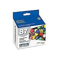 Epson T087020 4 Pack Gloss Optimizer Ink