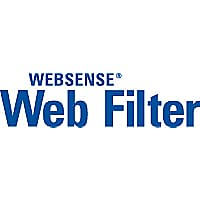 Forcepoint Web Filter - subscription license (1 year) - 300 additional seat