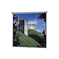 Da-Lite Model B with CSR projection screen - 136 in (135.8 in)