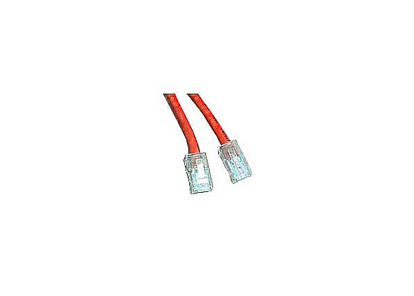 APC patch cable - 5 ft - red