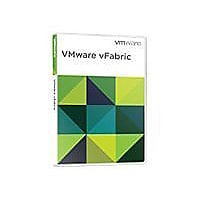 VMware vFabric SQLFire Professional Edition - license - 1 processor (up to