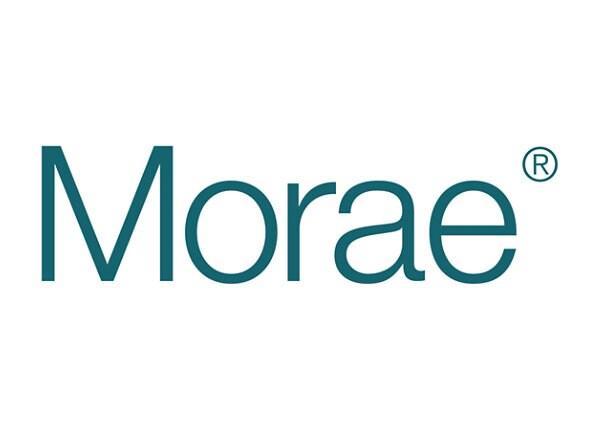 Morae Bundle (v. 3) - license - 1 user