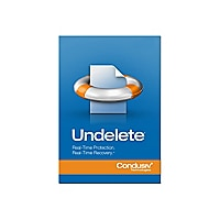 Undelete Client Edition (v. 10) - maintenance (1 year) - 1 license