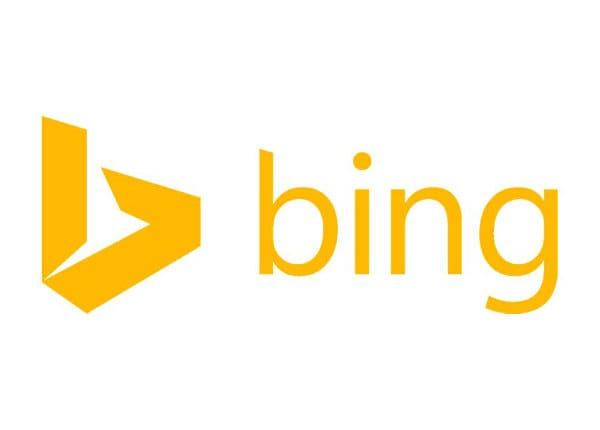 Microsoft Bing Maps Internal Website Usage Add-on - subscription license (1