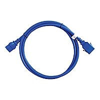 Raritan SecureLock power cable - 5 ft
