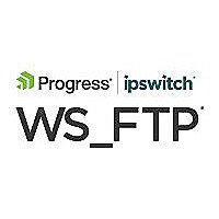 WS_FTP Professional (v. 12.4) - license + 1 Year Service Agreement - 1 lice