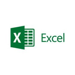 Microsoft Excel - license - 1 device