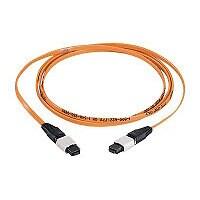 Panduit QuickNet MTP Interconnect Cable Assemblies - network cable - 10.1 m
