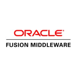 ORACLE FINANCIAL ANALYTICS FUSION 1
