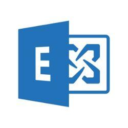 Microsoft Exchange Online Plan 1 - subscription license (1 month) - 1 user
