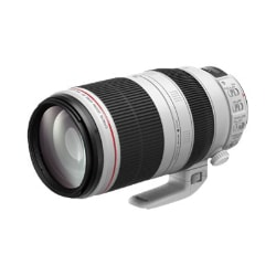 Canon EF telephoto zoom lens - 100 mm-400 mm