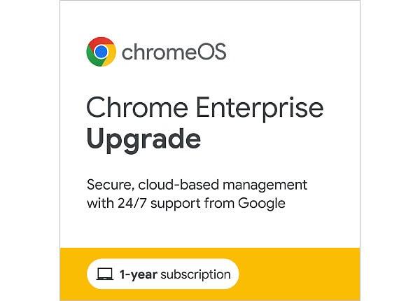 Chrome Enterprise Upgrade - perpetual license - 1 license