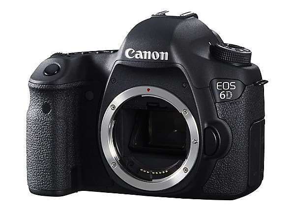 Canon EOS 6D- EF 24-105mm IS lens
