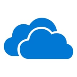OneDrive for Business - subscription license (1 month) - 1 user - with Offi