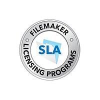 FileMaker (v. 14) - license + 1 Year Maintenance - 1 seat