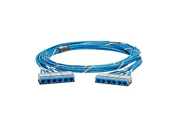 Panduit QuickNet Cable Assembly - network cable - 80 ft - blue