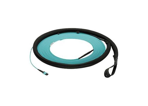 Panduit QuickNet Small Diameter Trunk Cable Assemblies - network cable - 10