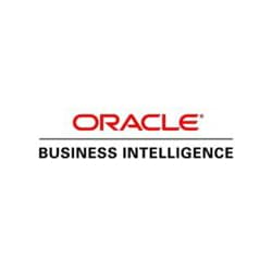 Oracle Business Intelligence Foundation Suite - license - 1 named user plus