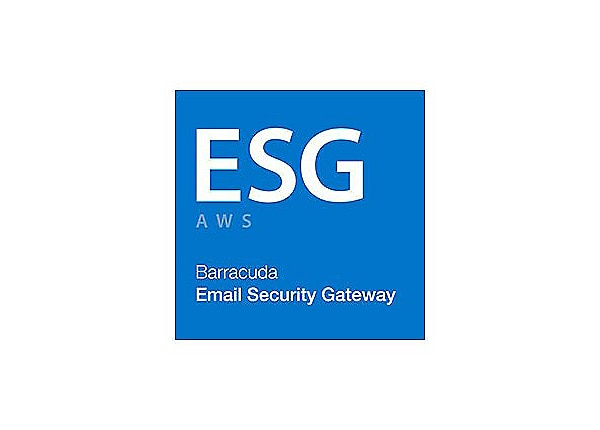 Barracuda Email Security Gateway for Amazon Web Services level 6 - subscrip