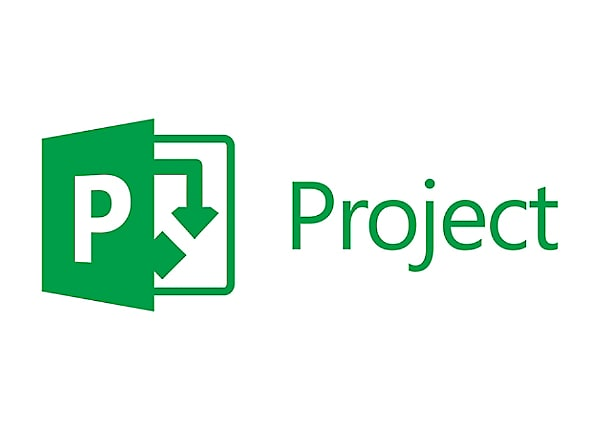 Microsoft Project Server 2016 - license - 1 user CAL