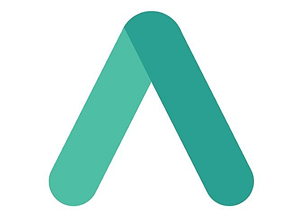 Arcserve Professional Services - technical support - 4 hours