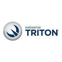 TRITON Enterprise - subscription license renewal (1 year) - 1 seat