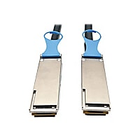 Tripp Lite 2M QSFP28 to QSFP28 100GbE Passive DAC Copper InfiniBand Cable Q