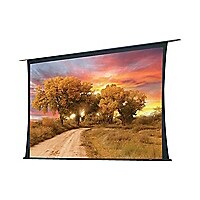 Draper Access/Series V Electric 16:9 HDTV Format - projection screen - 220