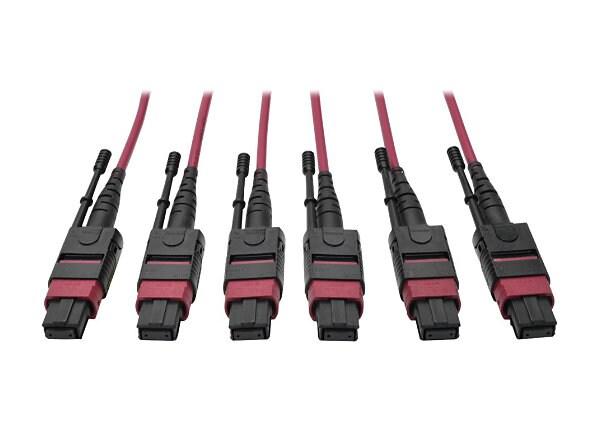 Tripp Lite 24-Fiber MTP MPO OM4 Base-8 MMF Trunk Cable  40/100GbE 3X, 15M