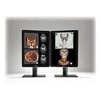 """Barco Nio Color 2MP - LED monitor - 2 x 2MP - color - 21.3"""""""