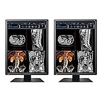 "EIZO RadiForce RX250 Dual Head - LED monitor - 2MP - color - 21,3"" - with N"