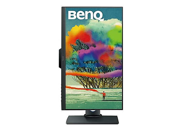 BenQ Designer PD2500Q - LED monitor - 25""