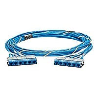 Panduit QuickNet Cable Assembly - network cable - 17 ft - blue