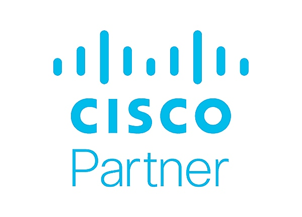 Cisco IOS IP Security - license - 200 Mbps