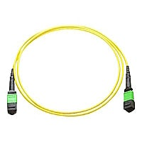Axiom network cable - 25 m - yellow