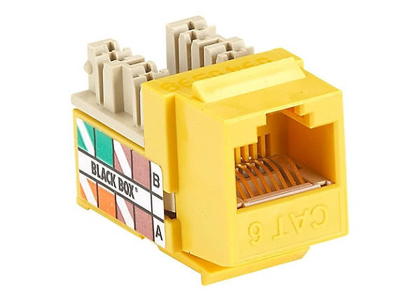 Black Box GigaTrue Plus modular insert