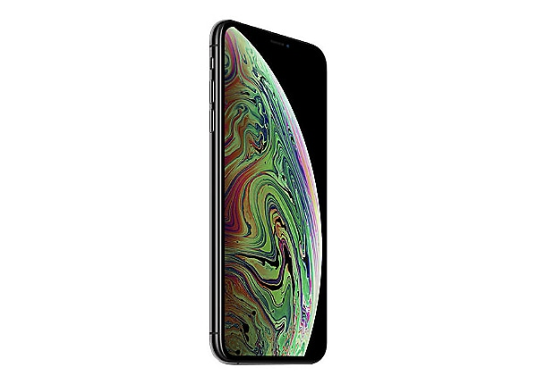 Apple iPhone XS Max - gris - 4G - 64 Go - CDMA / GSM - smartphone