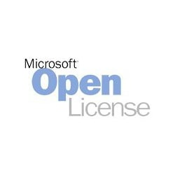 Microsoft Windows Server 2019 - license - 1 user CAL